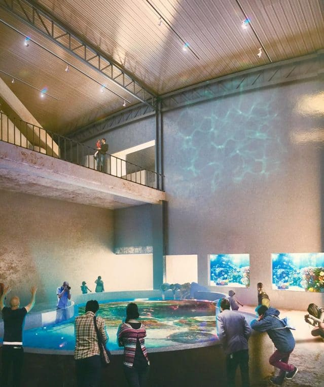 One of the most beautiful Aquariums of Mexico