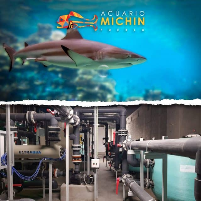 Michin Aquarium – Puebla, Mexico