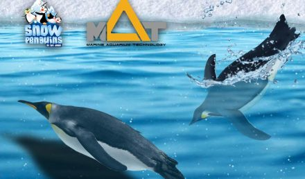 Ski Dubai Penguins Encounter LSS filtration