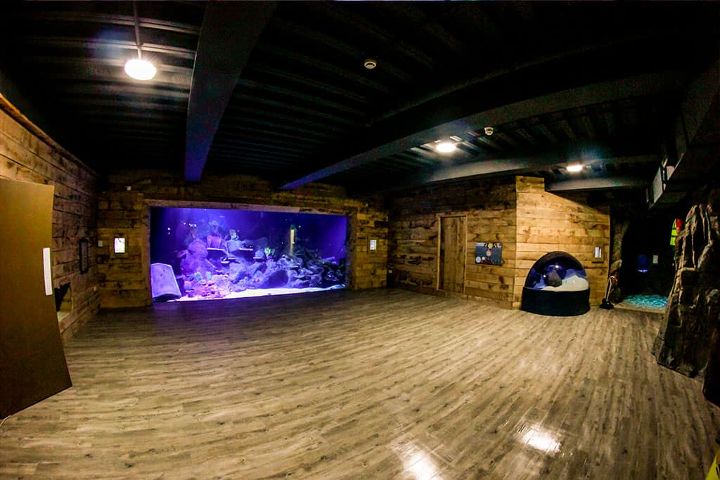 Skegness Aquarium Pirates Lagoon News Mat Lss