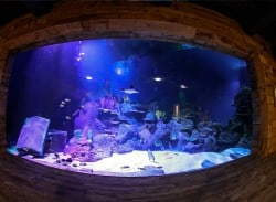 Pirates Lagoon Public Aquarium at Skegness
