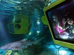 Dubai Legoland Atlantis Ride Aquarium