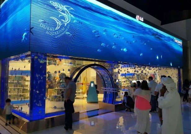 Dubai Mall Aquarium Retail Shops