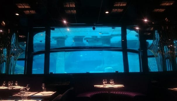 Rixos World Aquarium