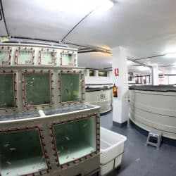 Fish Quarantine Facility
