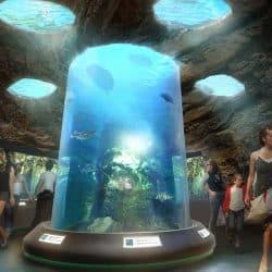 Pannon Park Aquariums